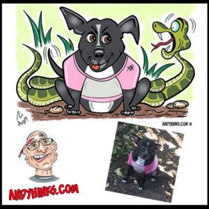 andyhinks.com andy hinks caricature illustration drawing andrew hinks Eumundi Markets staffy